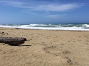 Beach, Cabarete, Condo, For Sale